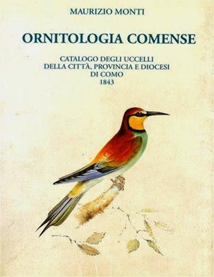 Ornitologia comense (Medium)