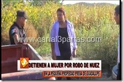 04 IMAG. DETIENEN A MUJER POR ROBO DE NUEZ EN LA PEQUEÑA PROPIEDAD PRESA DE GUADALUPE.mp4_000008174
