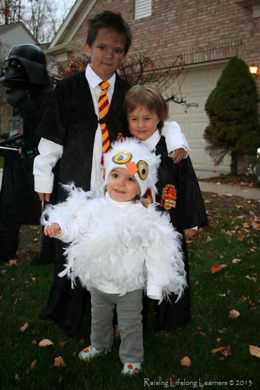 Easy Last Minute Snowy Owl Costume via www.RaisingLifelongLearners.com
