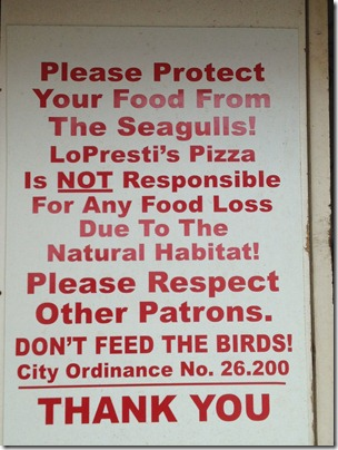 do-not-feed-the-seagulls