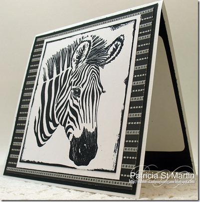 Zebra left 2012