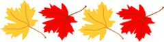 maple-leaf-border-h