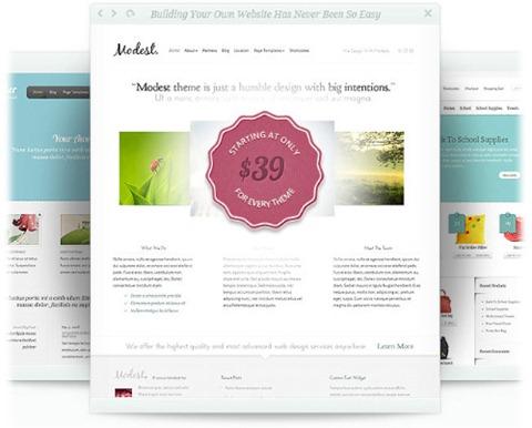 desarrollar plantillas premium para Wordpress