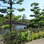 gorgeous park at the Shinagawa Aquarium in Shinagawa, Tokyo, Japan
