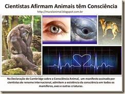 Cientistas Afirmam Animais têm Consciência_thumb[1]