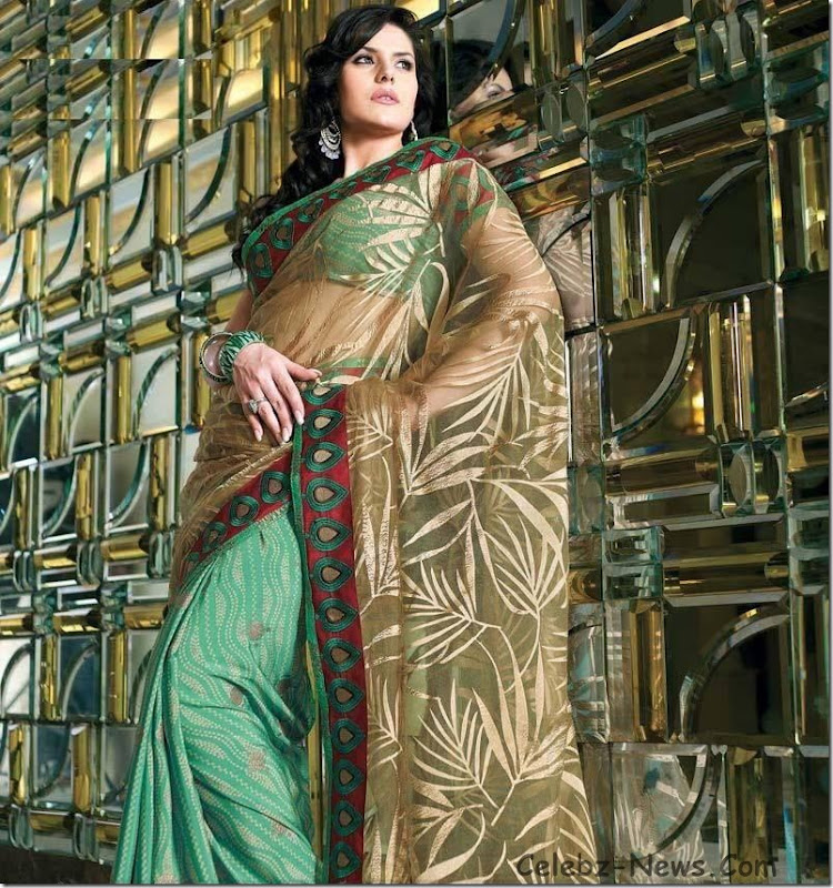 zarine-khan-saree-3