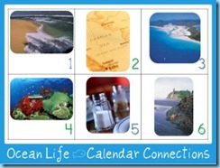 OCean Life Calendar Connections