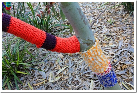 130119_UCDA_AustralianCollection_Natural-Transformations-yarn-bombing_07