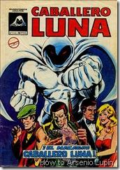 P00009 - Caballero Luna #1