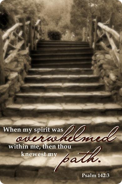 Psalm 142 3 jpg