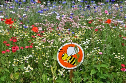 The bee pollinator symbol on a Euroflor Classic display in Monmouthshire