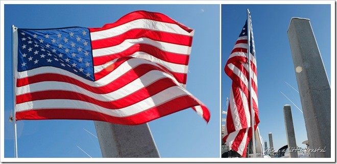 FlagDiptych 3_edited-2