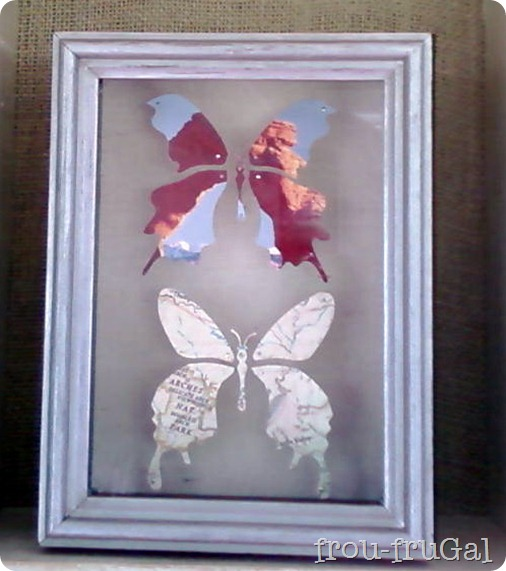 Map &amp; Picture Butterfly Specimens