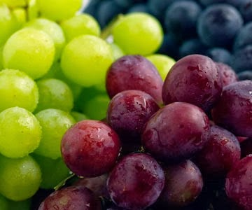[grapes%255B6%255D.jpg]