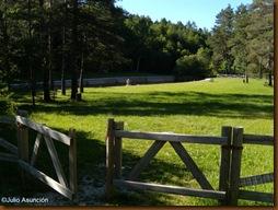 Área recreativa del Zatoya - Abaurrea Alta