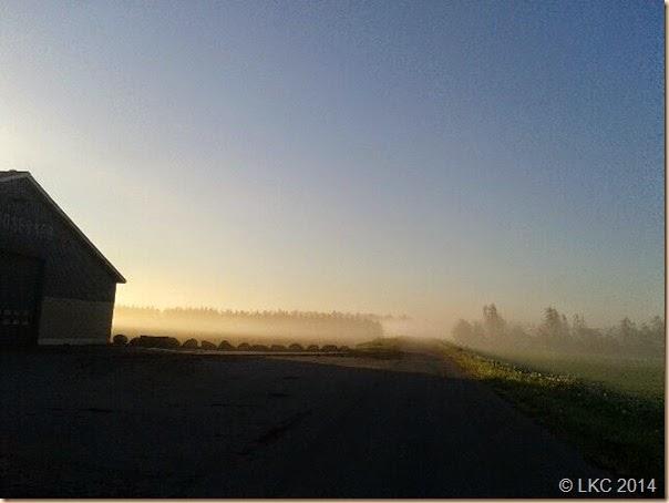 morgenstund maj