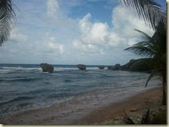 2011-12-27 Bathsheba Beach (Small)