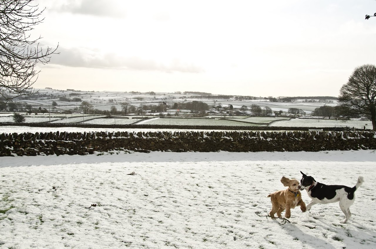 Playing in the snow in the Peak District