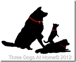 three dogs silhouette with red collars