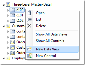 'New Data View' option for 'c100' container in the Project Explorer.