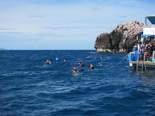 A steady stream of divers, making their way towards Sail Rock.