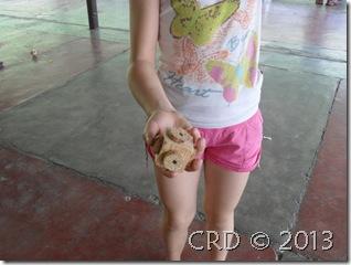 SDC15012