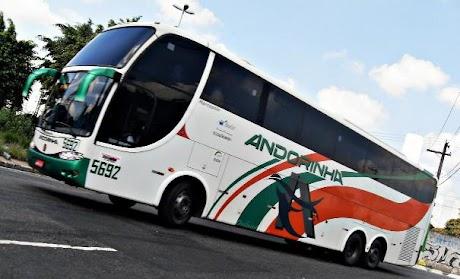 viacao-andorinha-passagens-onibus-horarios.jpg