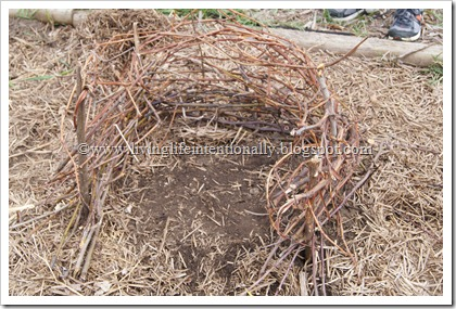 How to Build an American Early Settler Wattle & Daub House for Homeschool Kids
