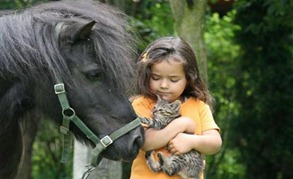 kucing-dan-anak