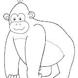 zviratka-opice.jpg