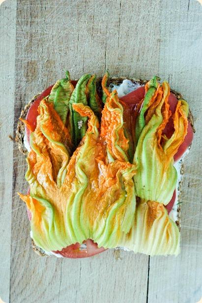 zucchini flower sandwich