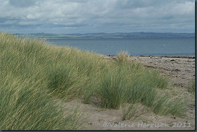 12-sand-dunes