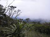 The windswept higher slopes of Sibuatan (Daniel Quinn, August 2011)
