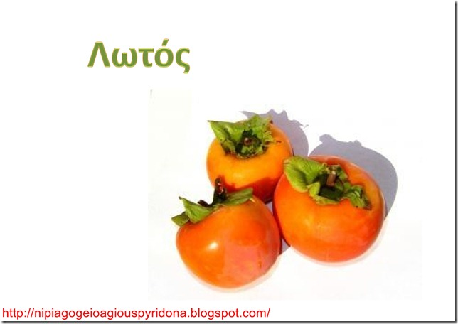 Τα φρούτα του χειμώνα-6