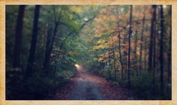 2012-10-19_08-41-14_517 copy 2