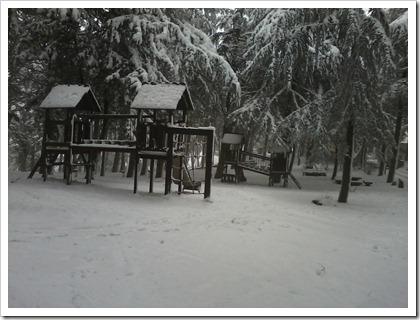 ancora pineta cn neve 2012