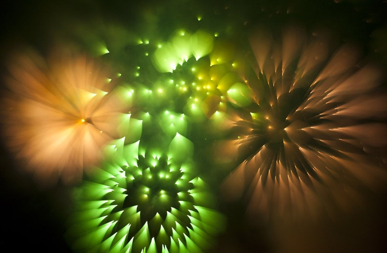 david-johnson-fireworks-8
