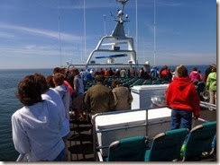 Our vantage point looking for whales