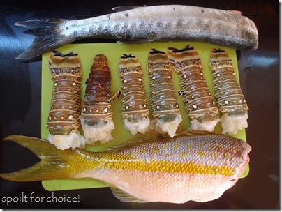 Dinner - Barracuda, Lobster or Snapper??
