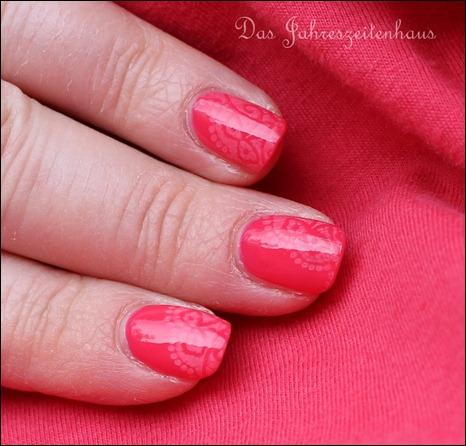 Pink Apricot 4