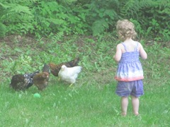 2012 Memorial Day Bella with her chickens and ball6