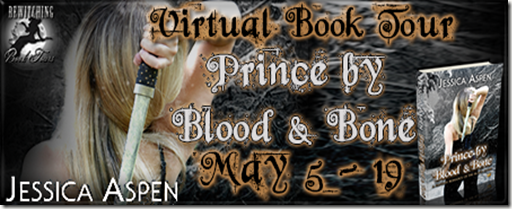 Prince by Blood and Bone Banner 450 x 169_thumb[1]