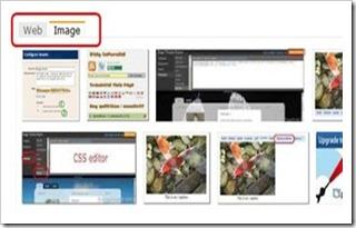 custom search image tab