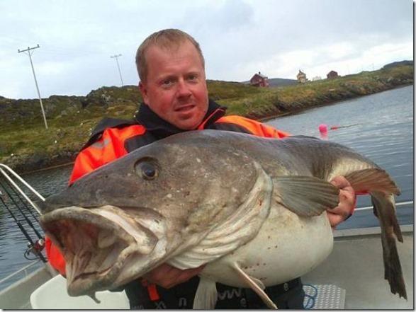 big-fish-fishing-31