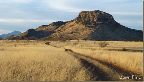 San Rafael Grasslands_025