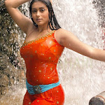 Namitha Hot (24).jpg
