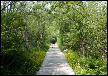 01d - Friar's Head Hike - Along the boardwalk
