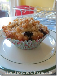 blueberry lemon streusel muffins - The Backyard Farmwife