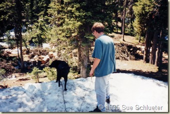 Joe and Sadie playing in snow in Yellowstone - Copy