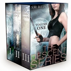 The descent gate series - S. M. Reine